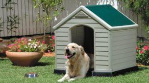como construir uma casinha de cachorro